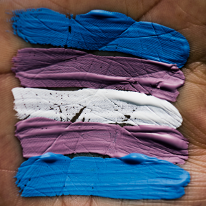 Transgender Pride Flag Colors Painted on Hand